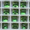 Rivoli Square 10 mm - Dark Moss Green