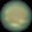 Perle Banut  10 mm - Scarabaeus Green
