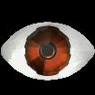 Eye Fancy Stone - Red Brown