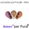 Amos par Puca